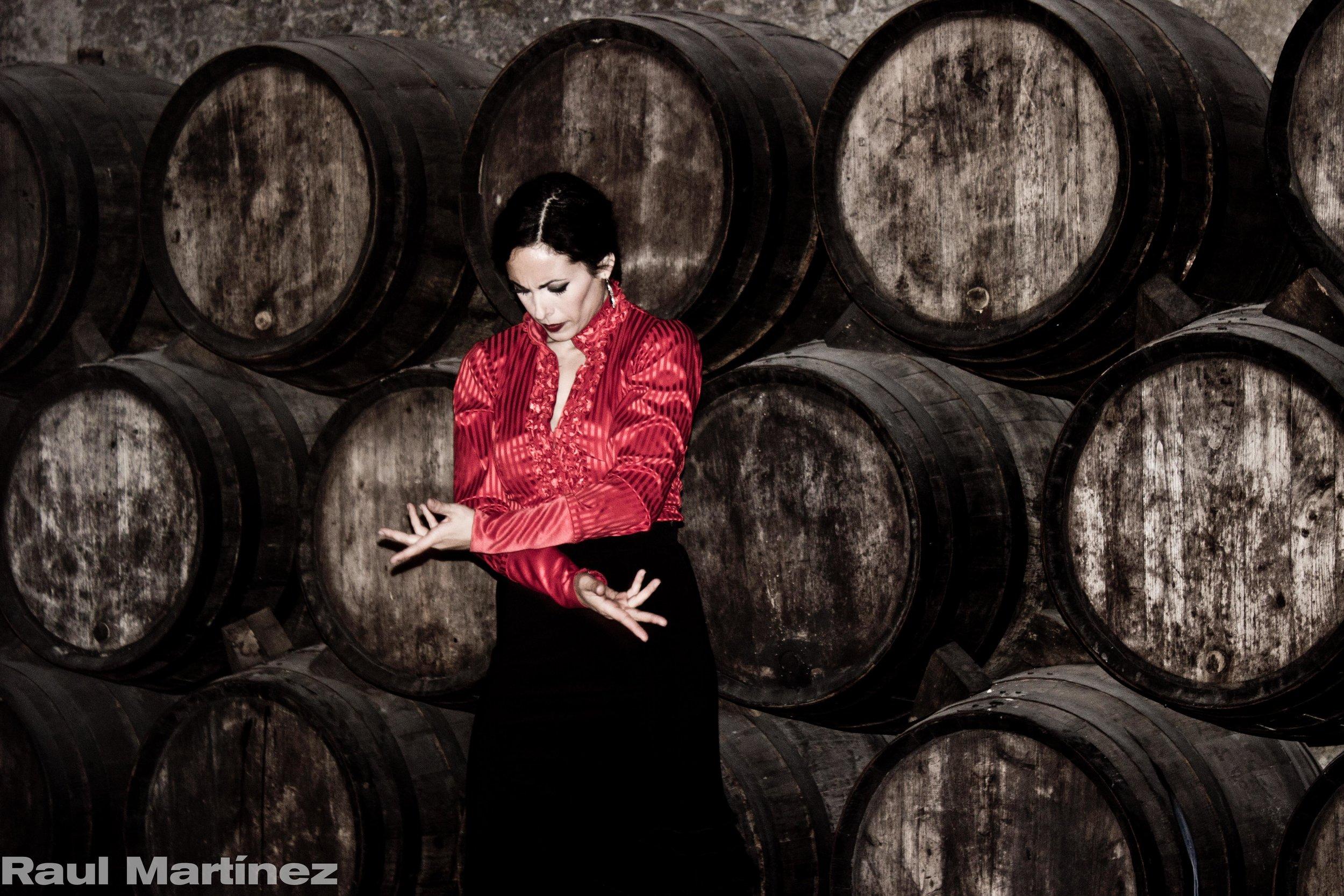 Arte Flamenco.jpg