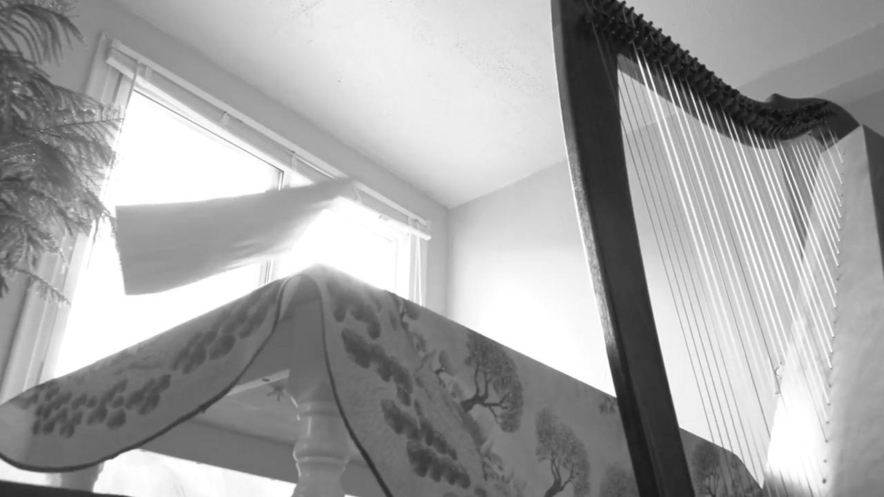 The Harpist Cover.jpg