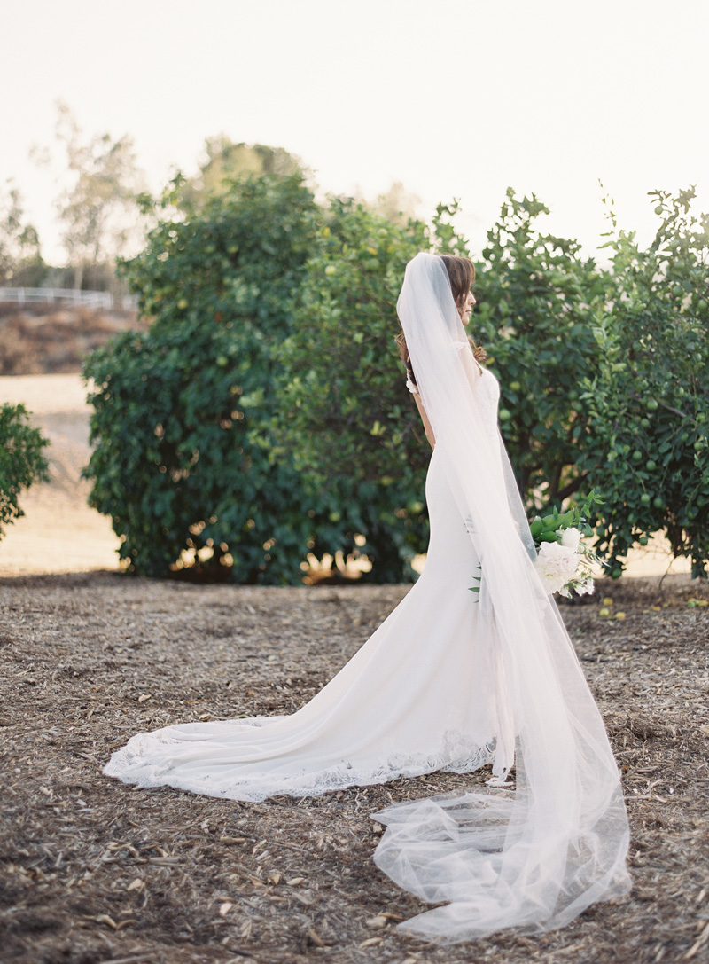riley-wedding-439.jpg