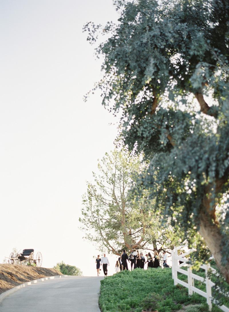 riley-wedding-464.jpg