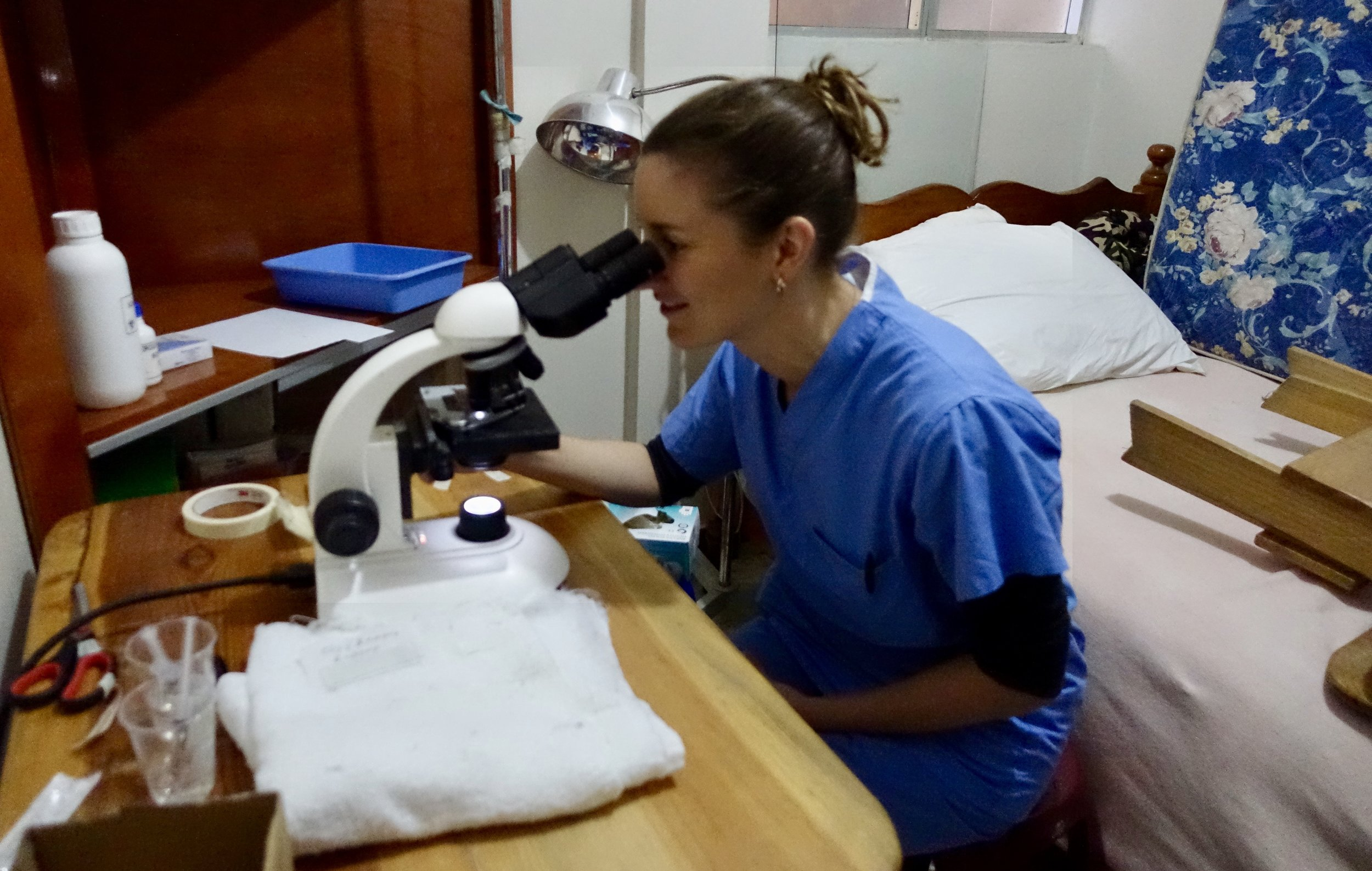Mallory at work in the microscope room testing for possible infections