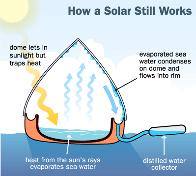 This image, from suryaurza.com, shows the simple science a solar still uses to produce fresh water. It really is a teeny microcosm of the natural rain cycle and prime example of biomimicry.