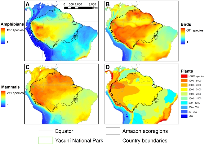 Heat maps show the immense biodiversity of mammals, amphibians, birds, and plants in Yasuní National Park, Ecuador. Warm colors represent high levels of biodiversity. Source:  (Bass, 2010)