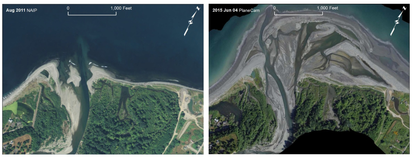 Right: Washington state's Elwha river delta pictured in 2011 at the beginning of a large scale dam removal project. Left: The Elwha delta in 2015 roughly 4 years after the dam removal project began. Image: psmfc.org.