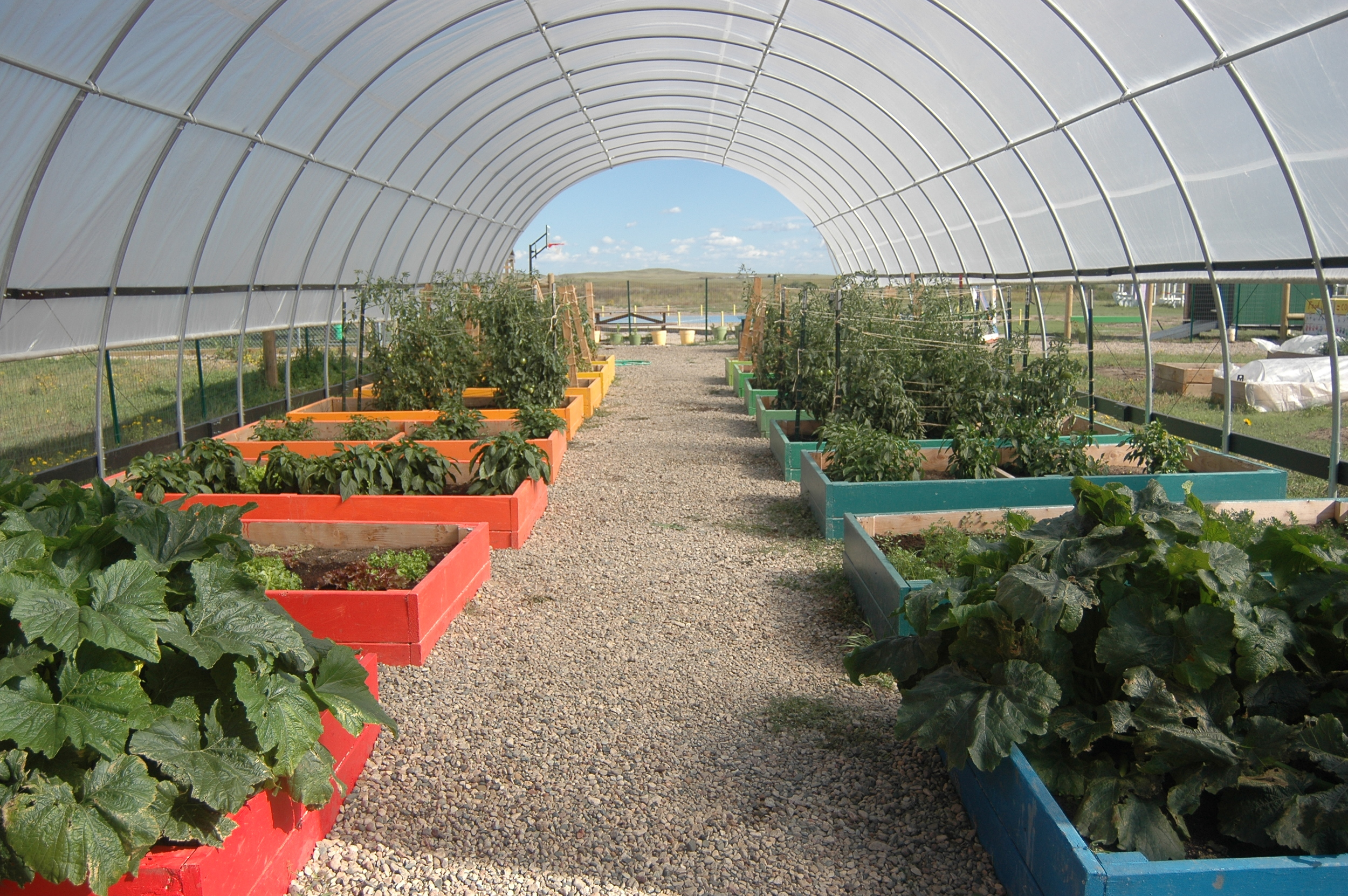 The community micro-farm