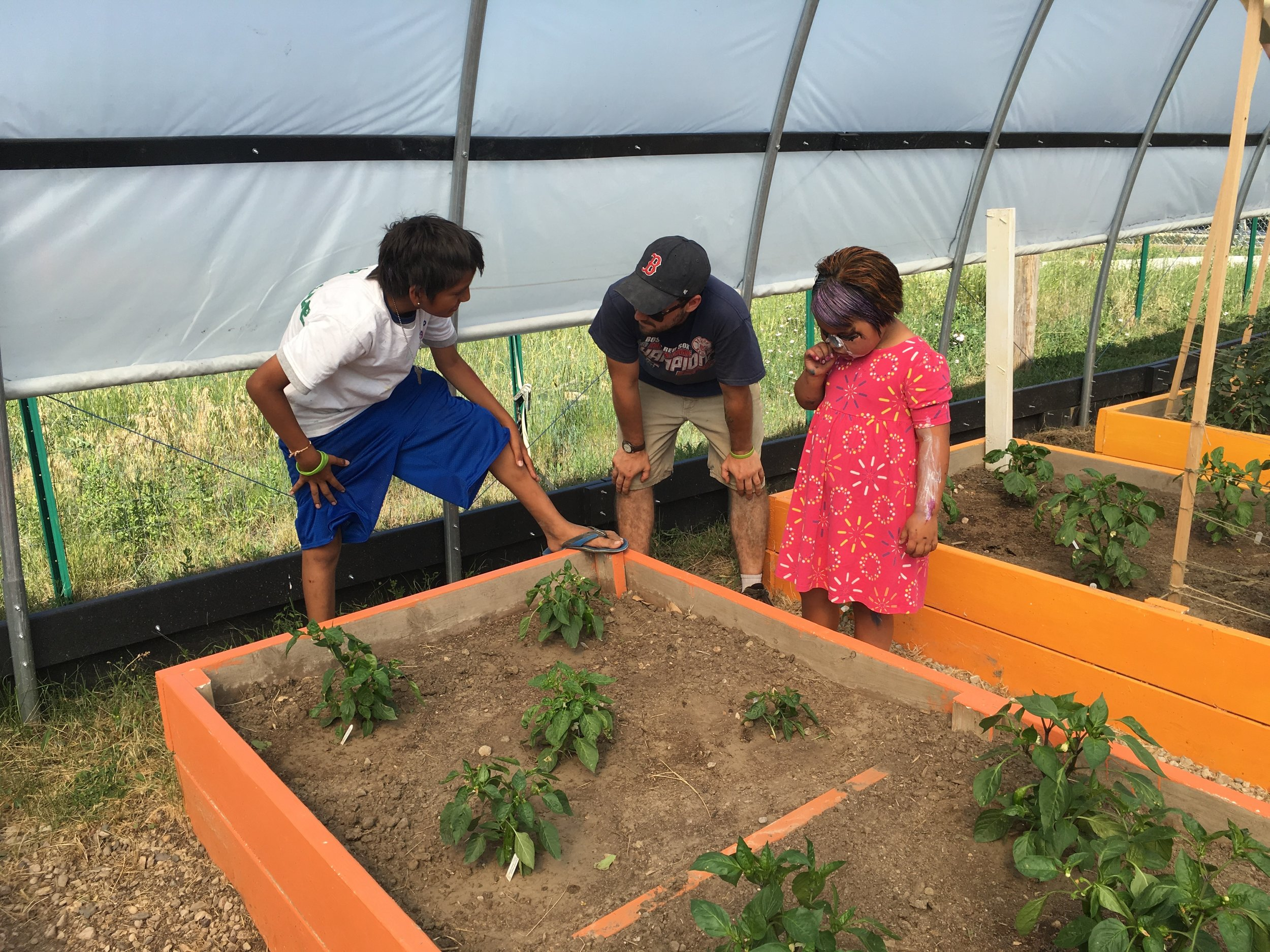 Kids showing volunteers how the peppers grow!