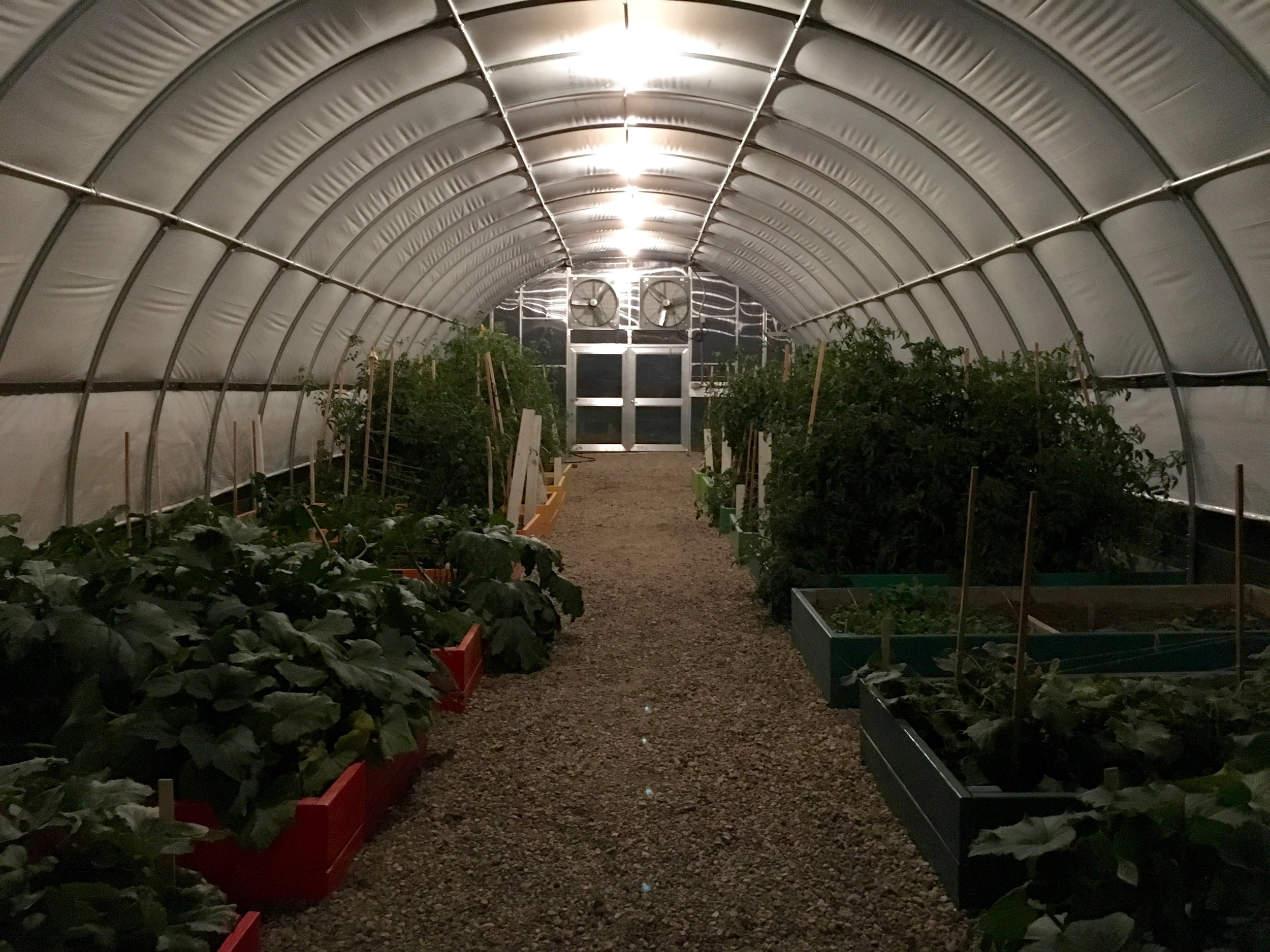 The greenhouse aglow in the evening!