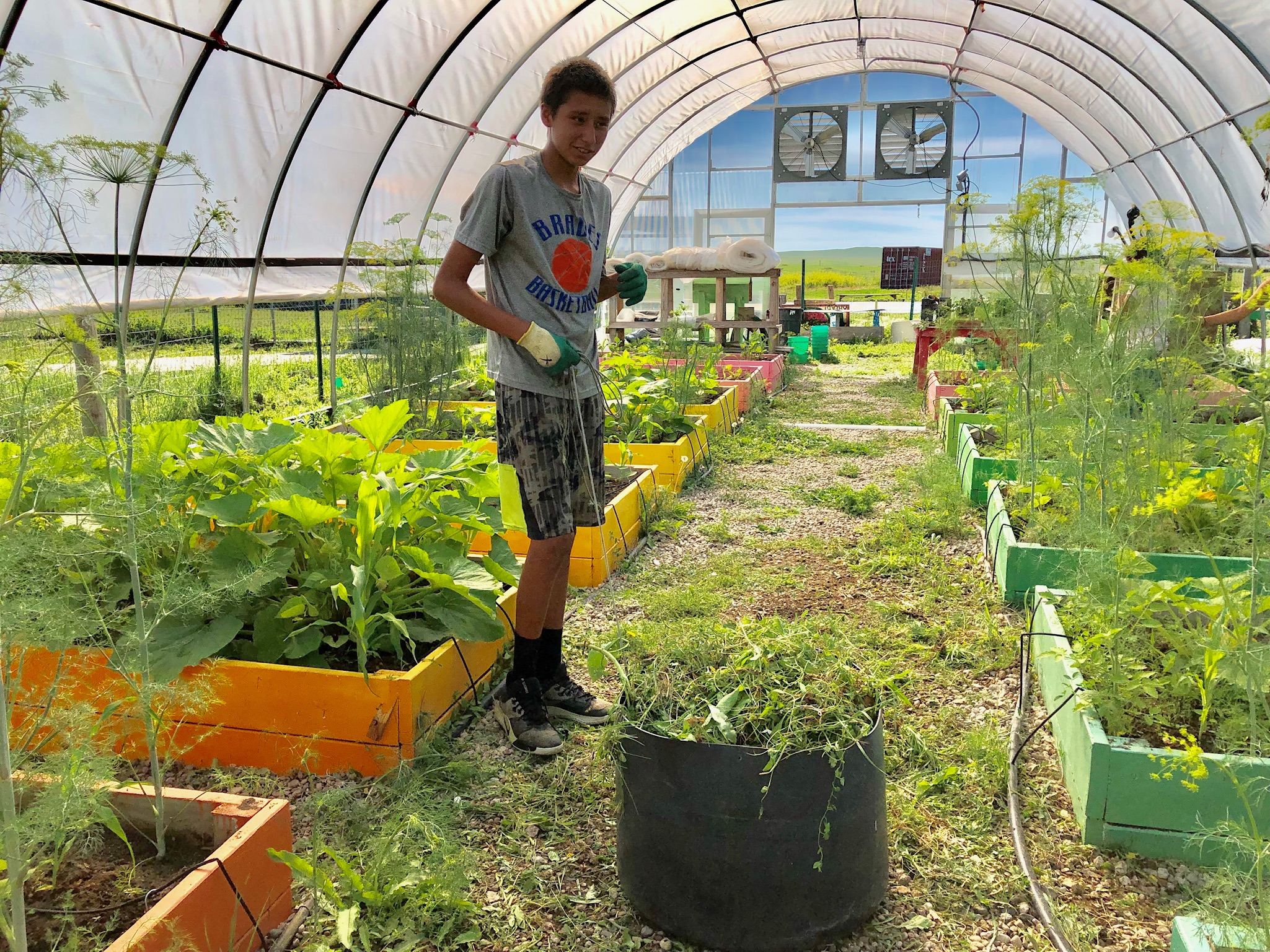 Gardening Classes  in our farm & greenhouse where children learn about food sources and healthy lifestyles.