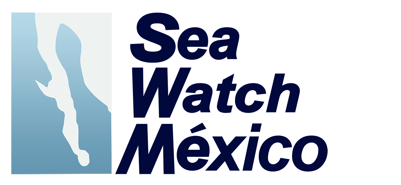 Sea Watch copy.jpg