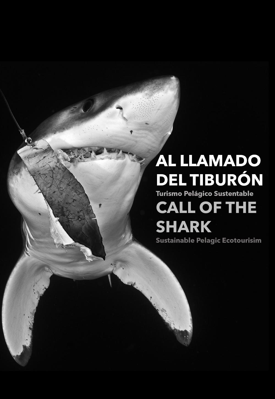 Call of the Shark Al llamado del tiburón Pelagic Life.png