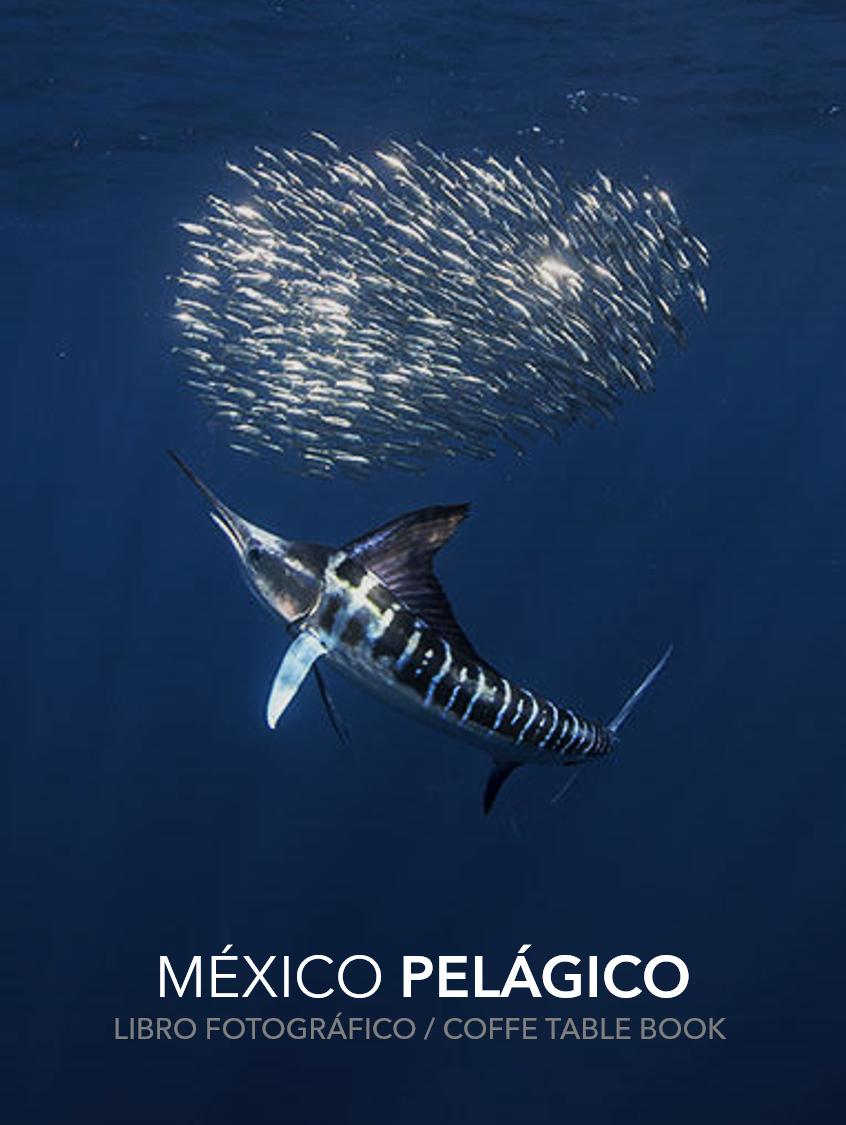 México Pelágico Libro coffe table book libro fotografico.png