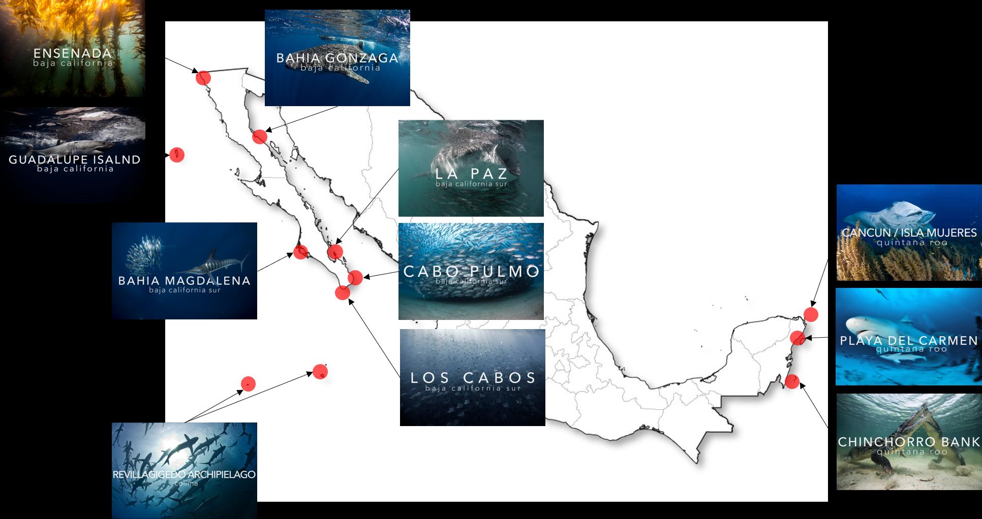 Mapa Mexico Pelagic Life Expediciones.png