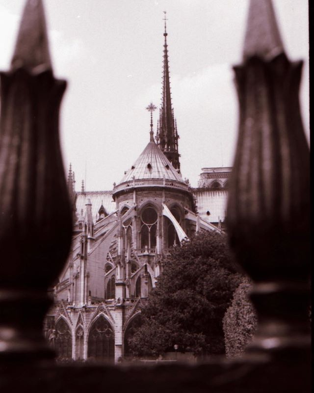 Have been here multiple times over the years but took this pic (on 35mm film) the first time I visited Notre Dame in 2001.