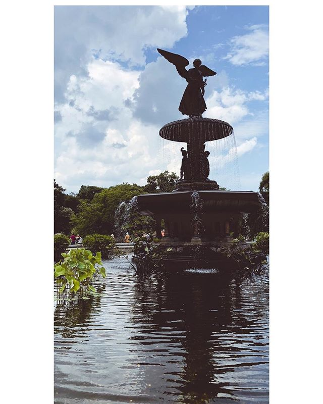The fountains of Central Park, or the ponds of Paris? Regardless one my favorite things is walking through the beautiful gardens. ⠀ ⠀ #wanderlust #instatravel #beautiful #travel #paris #france