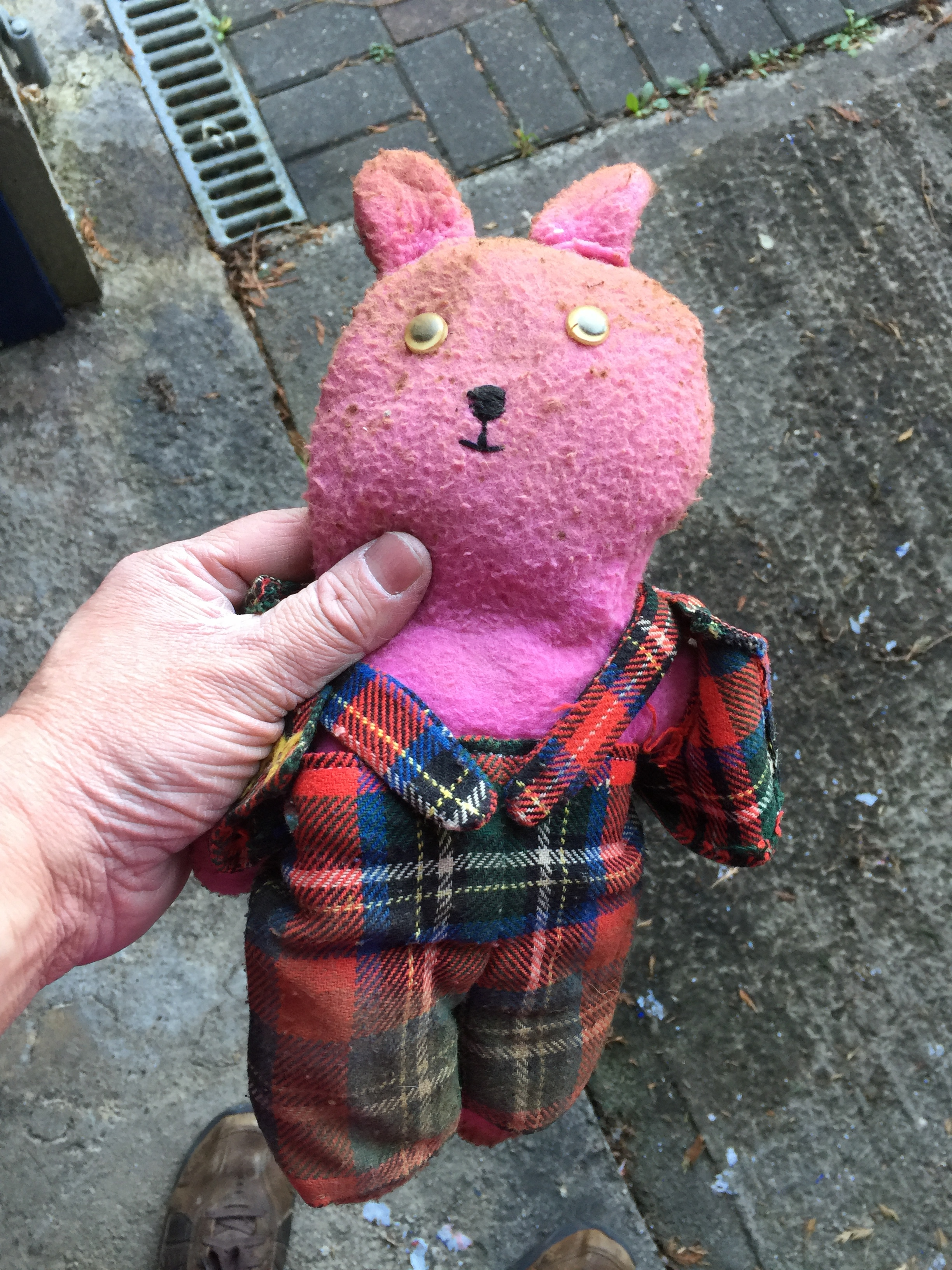 my old teddy bear from the 1970s, recovered from the garage clearance