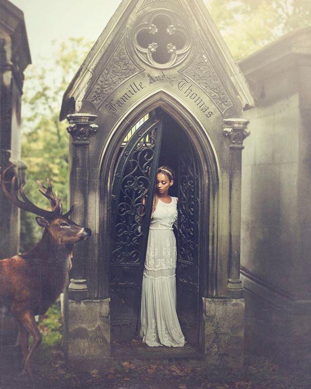 😋 #paris #editorialphotography #deer #faeriecattle #spirit #cemetery #coutureparis
