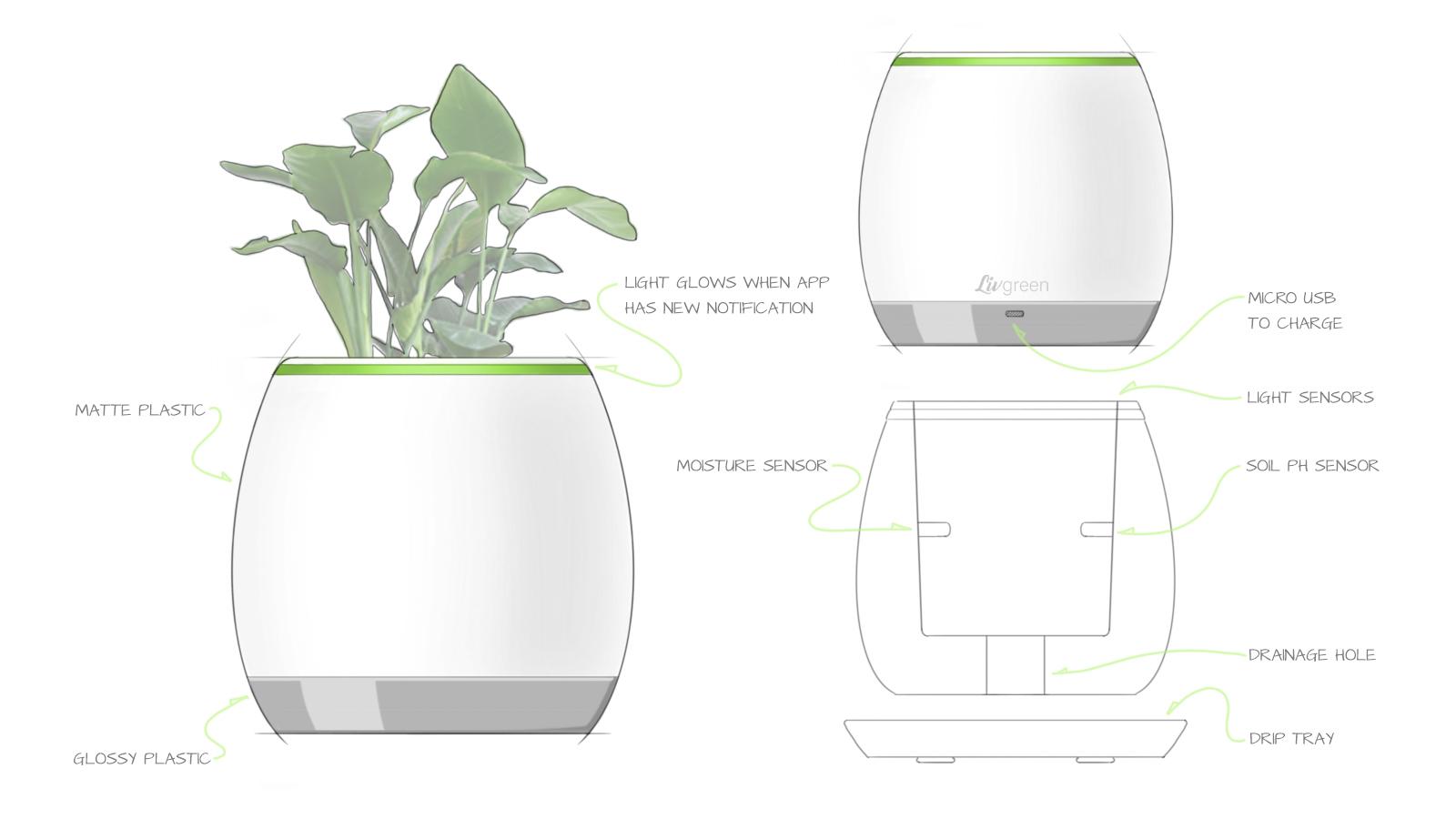 concept drawing liv v2.jpg