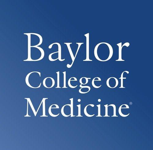 social-logo-baylor3.jpg