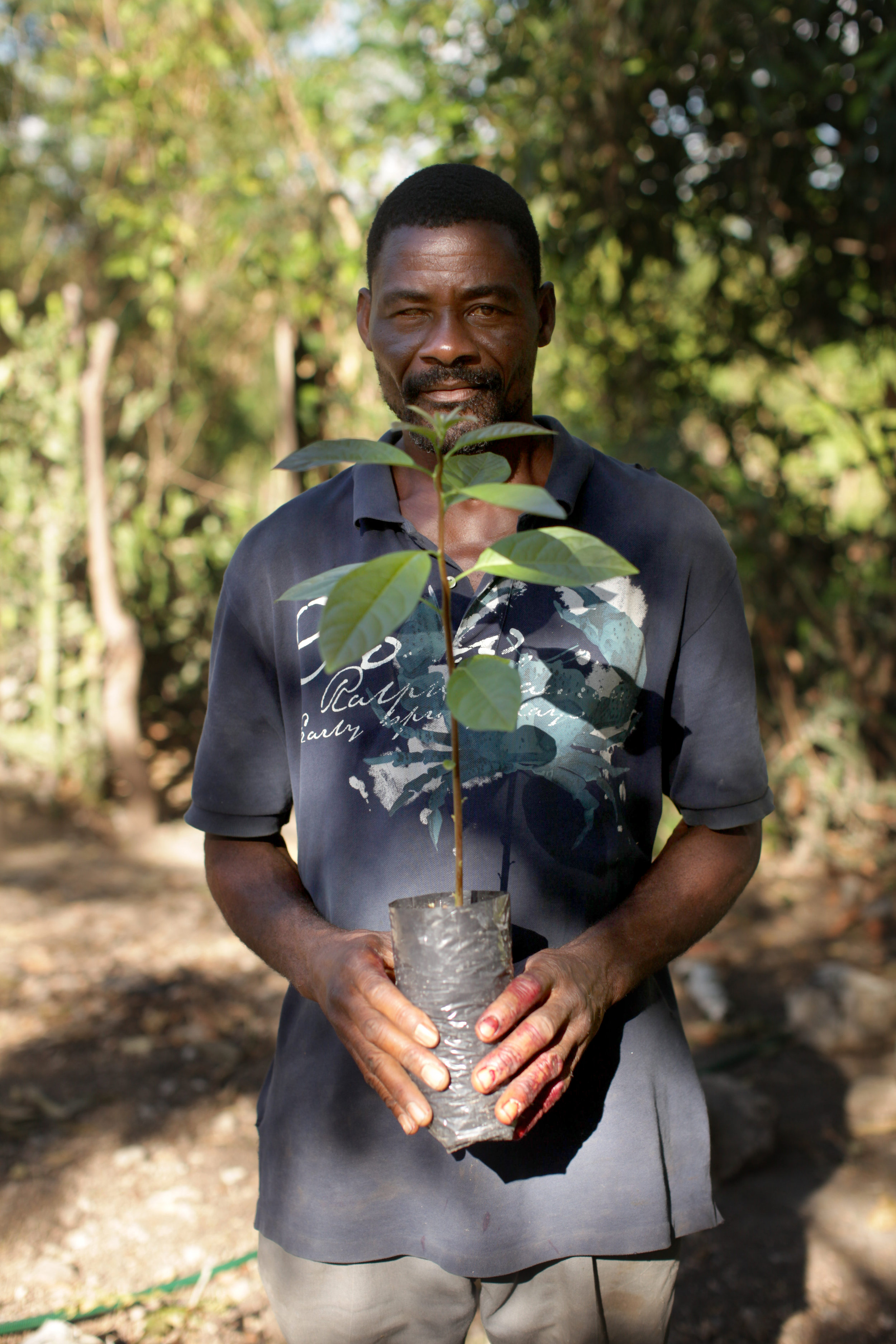 Michelet Jean Milus holds a tree sapling at the Valere Tree Nursery in Desarmes, Haiti.
