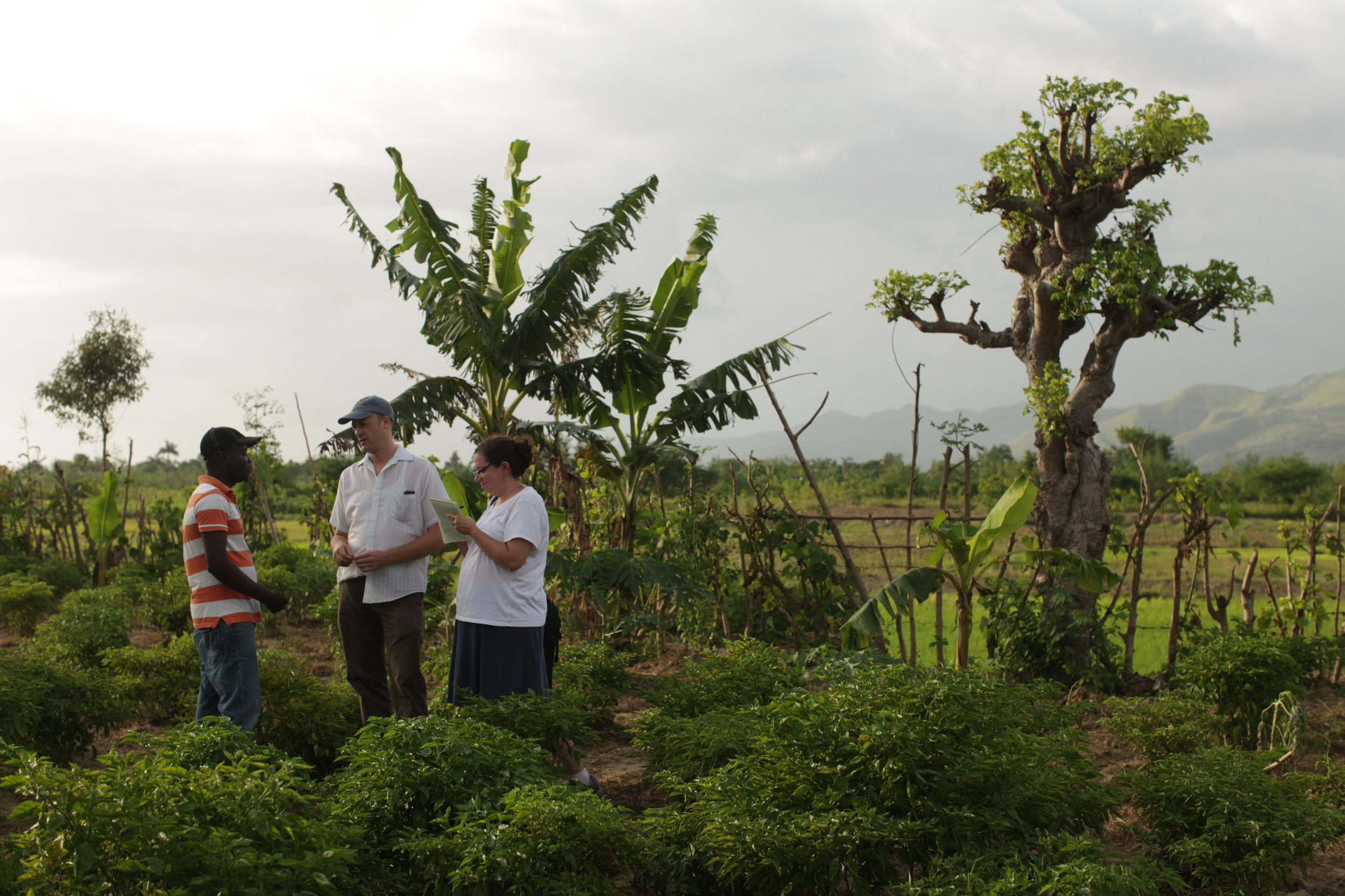 MCC U.S. Publications Coordinator Marla Pierson Lester and MCC Haiti Representative Kurt Hildebrant interview Duckson Dosthenes who studied agriculture at Desarmes professional trade school. After graduating,he started his own business growing and selling vegetables to market vendors.