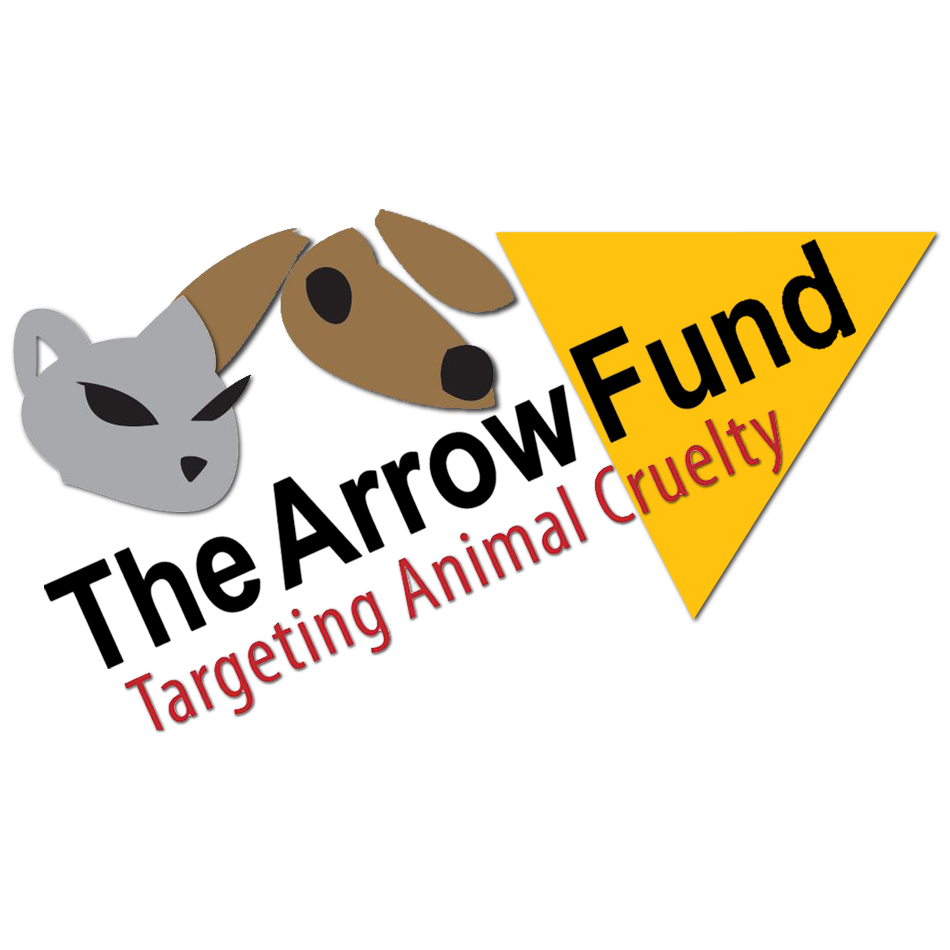arrowfund.png