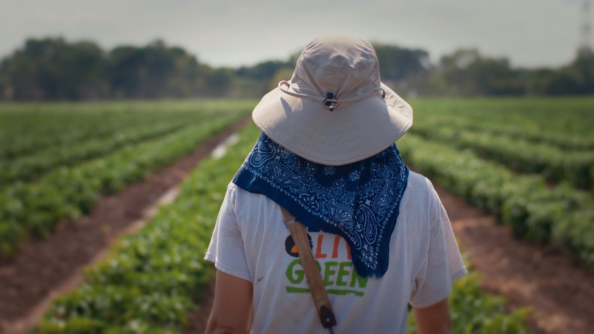 Texas Department of Agriculture - Go Texan - Yuta Yamaguchi