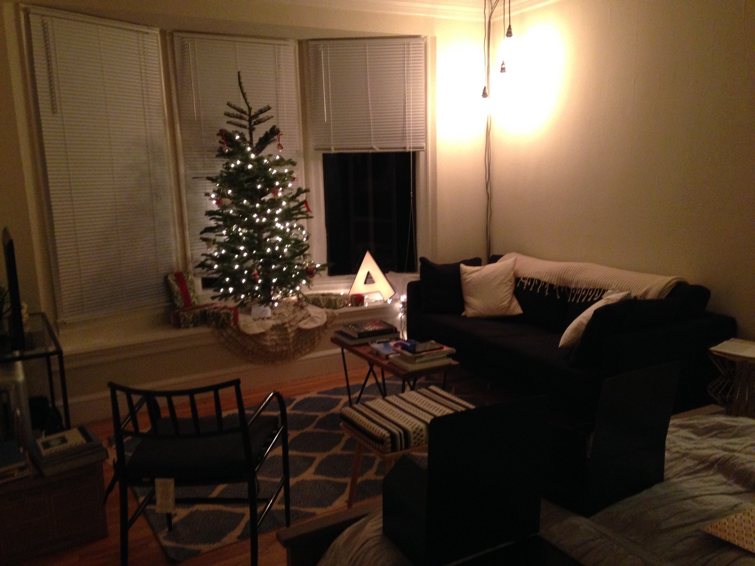 Our modest Christmas decorations that year. Oh, and look at that! More furniture and some added lighting.
