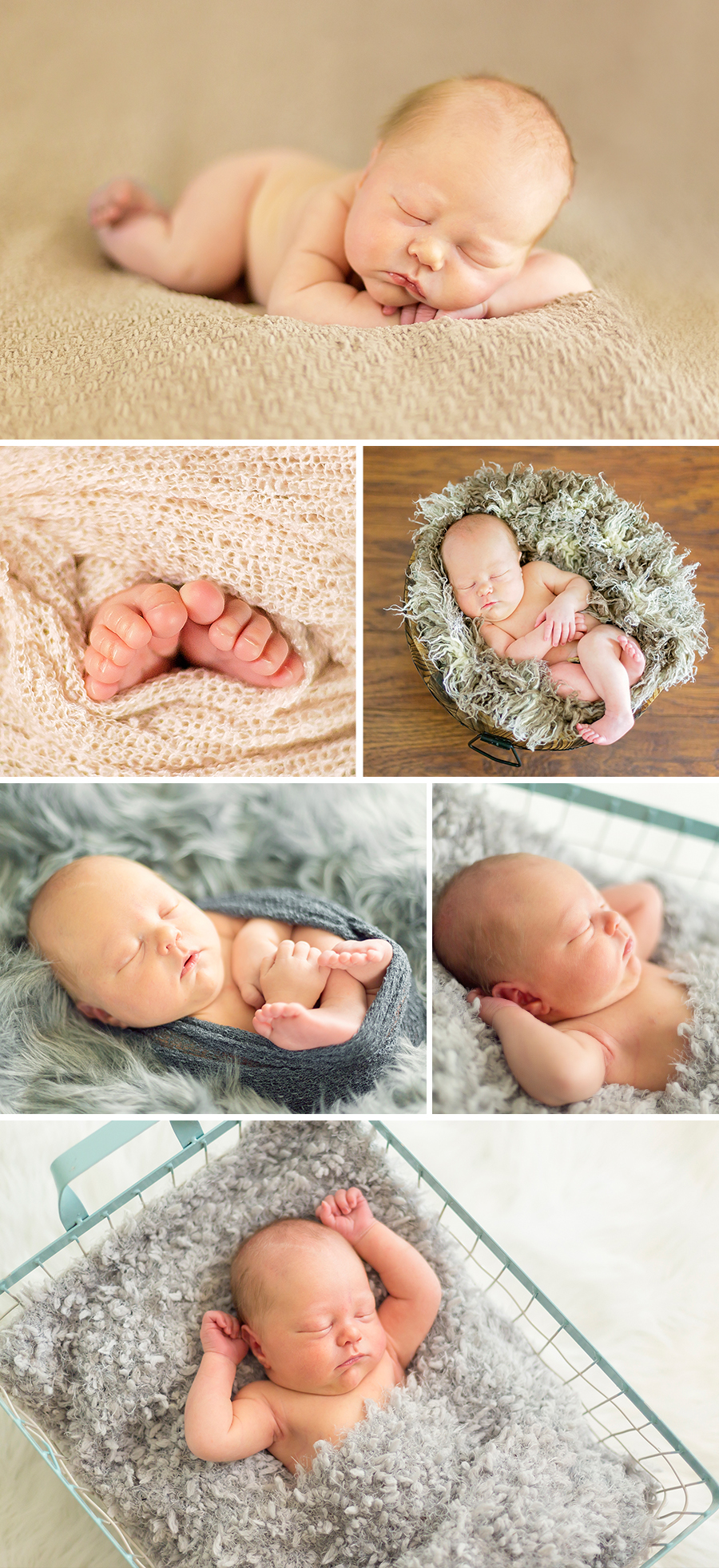 charlie newborn knoxville newborn studio photographer 1
