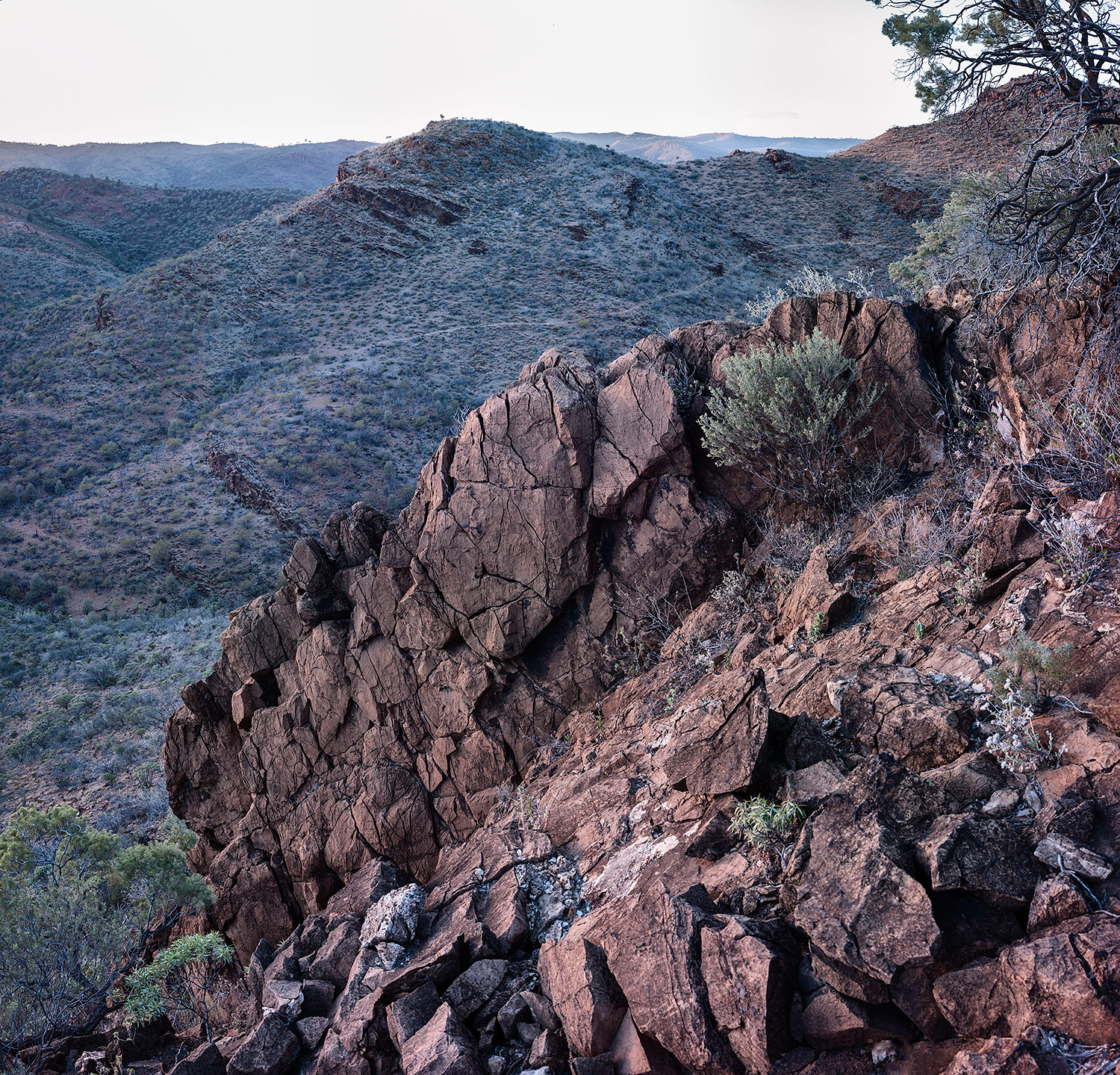 Welcome Pound, Arkaroola Wilderness Sanctuary, 2014.