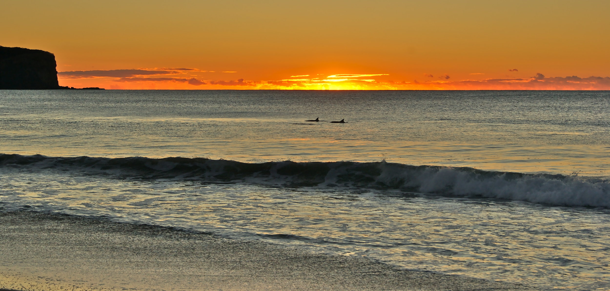 Sunrise and dolphins South Durras main beach