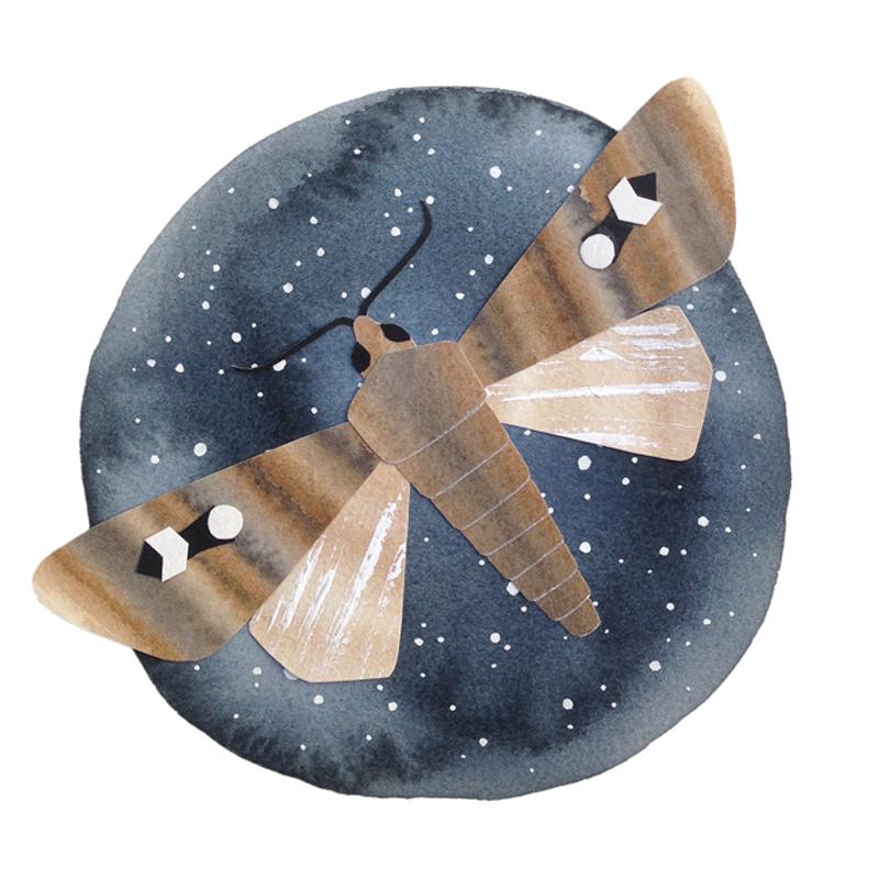 handmade paper moth watercolour falling for florin