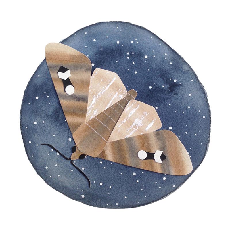 handmade paper bogong moth watercolour falling for florin