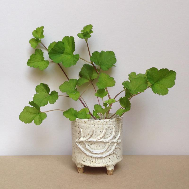 peta armstrong ceramic eye planter falling for florin