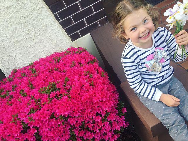 Picking blooms with this #minichipmunks