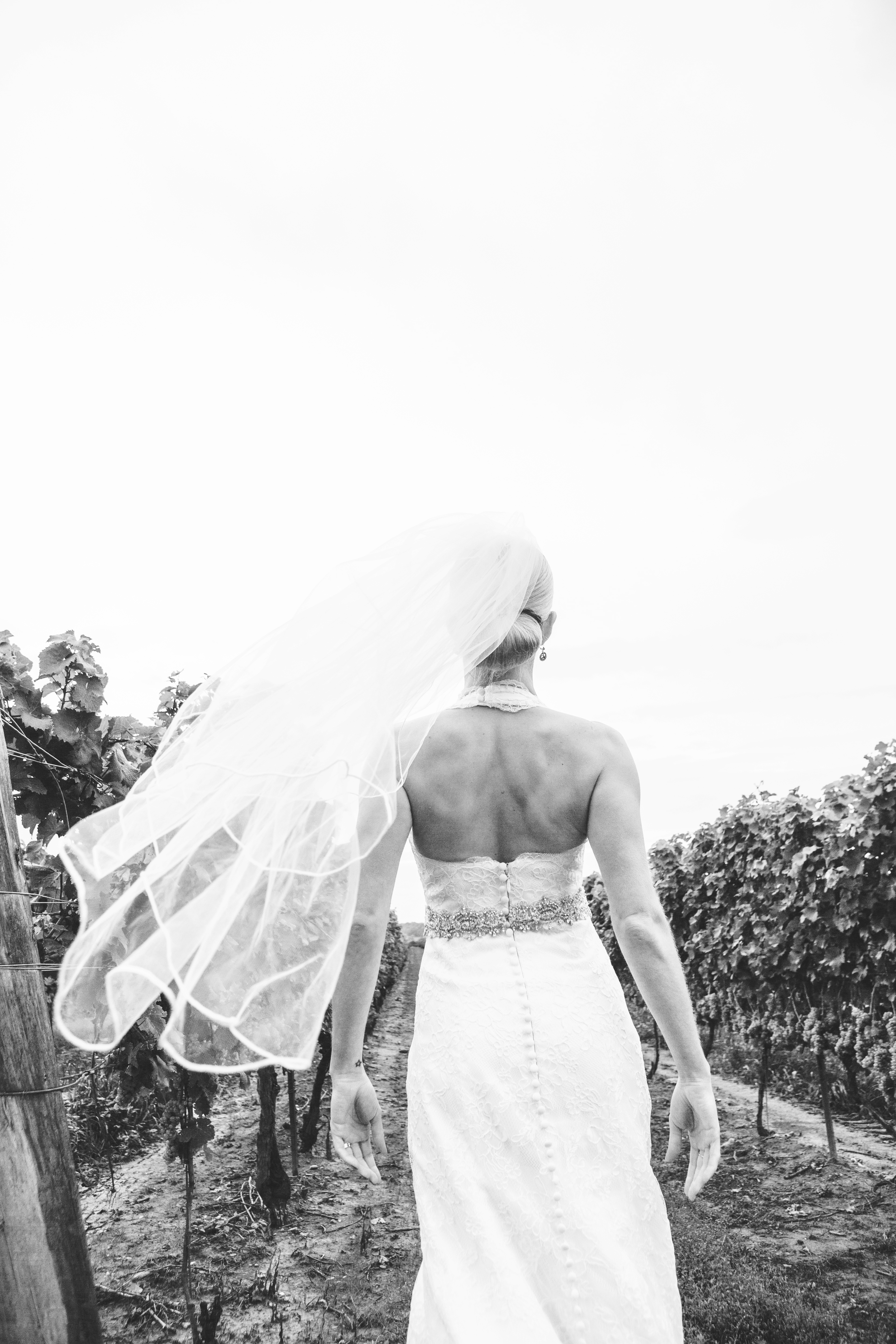 dintino-portraits-winery-77-2-bw.jpg