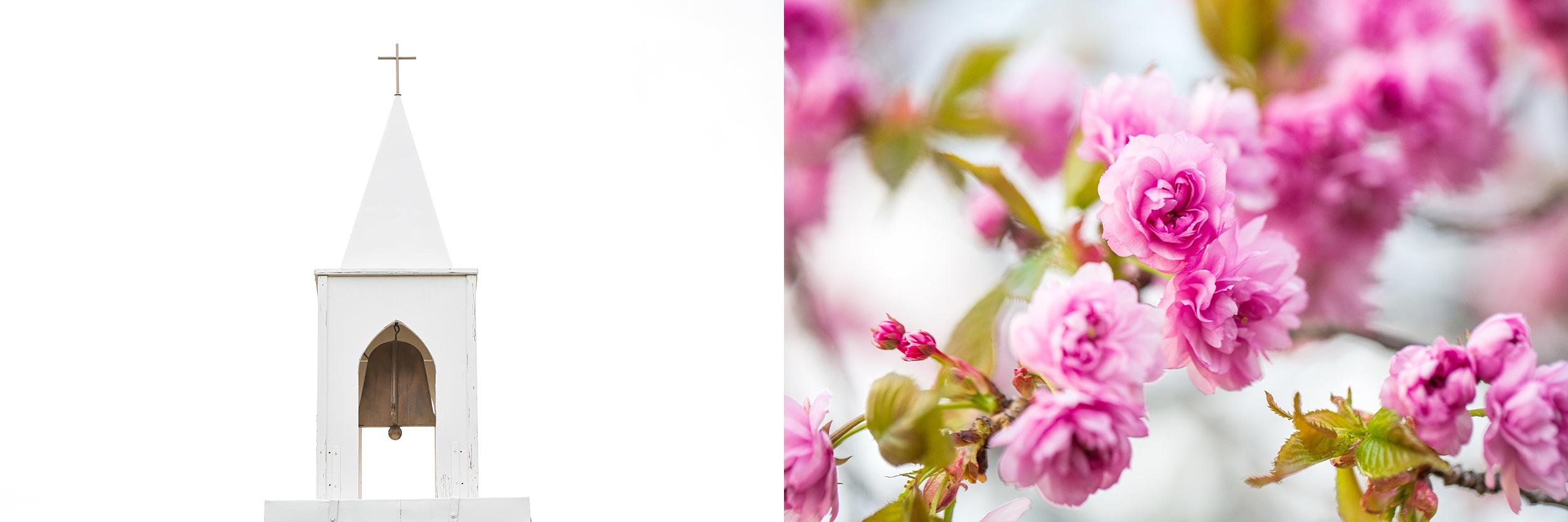 niagarafallsbotanical gardens-engagement_0031.jpg
