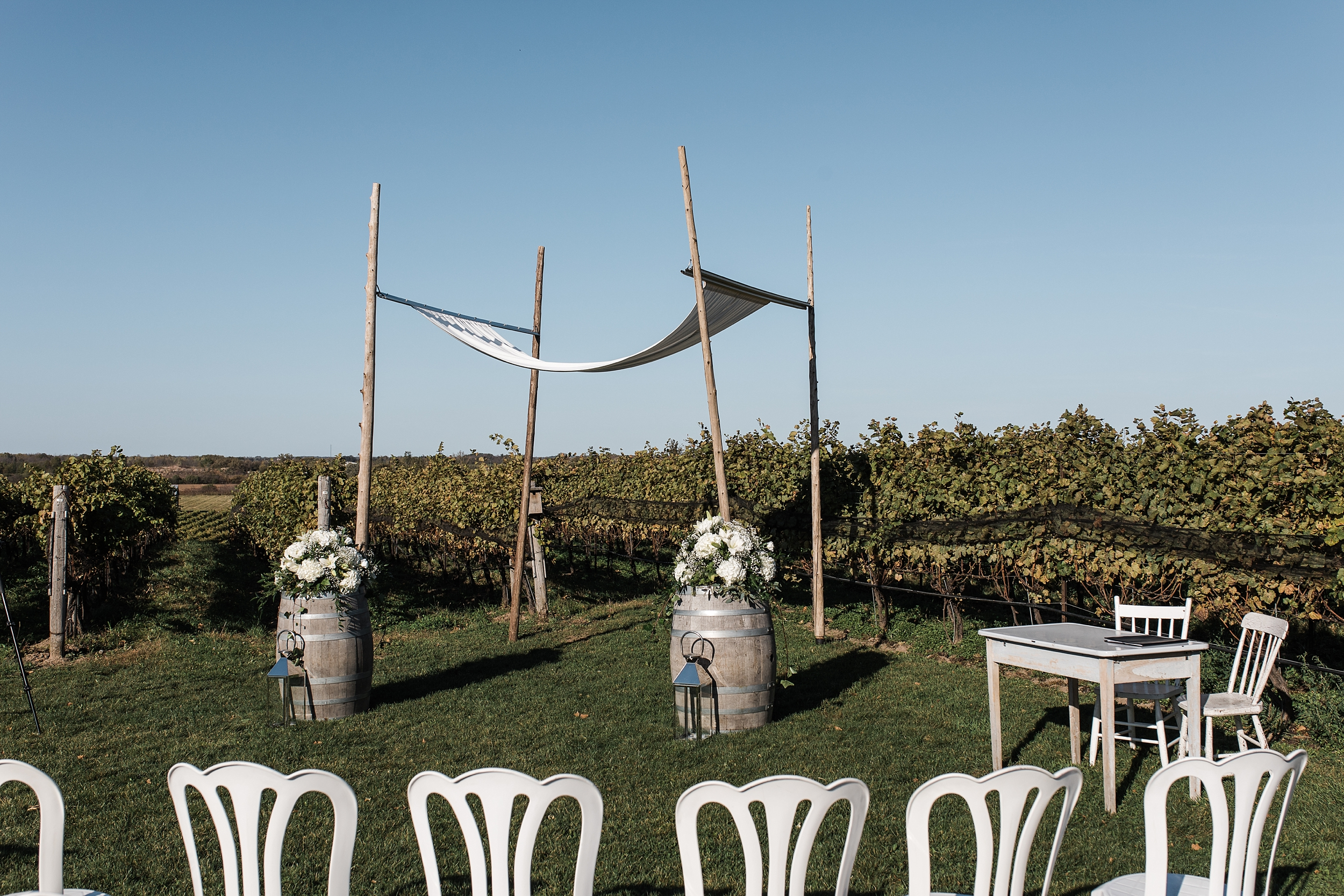 ravinewinery-wedding_0027.jpg