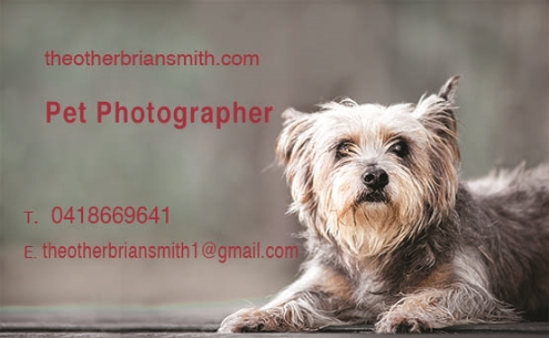 theotherbriansmith.com business card.jpg