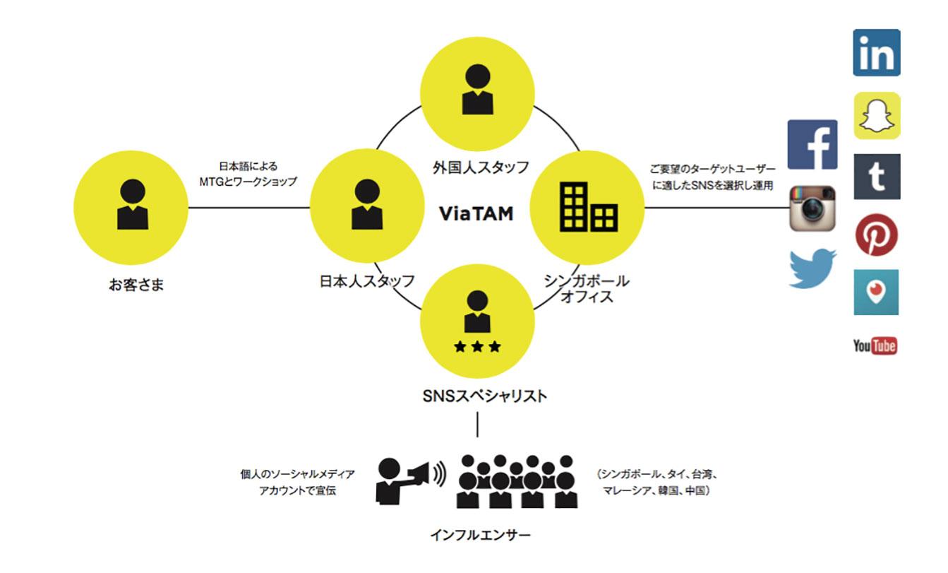 ViaTAM-FlowChart.jpg