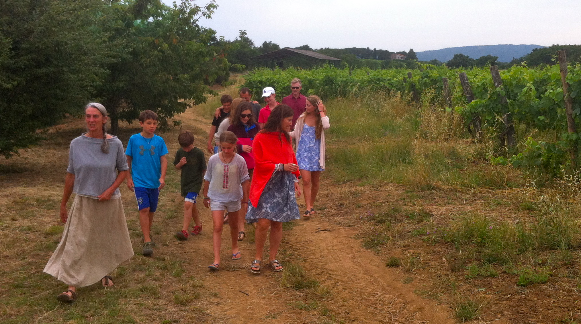 Organic and bio-dynamic wine making in Sovana. Come and see the winery and vineyards on our  3 Regions BIO-Cycle  tour!