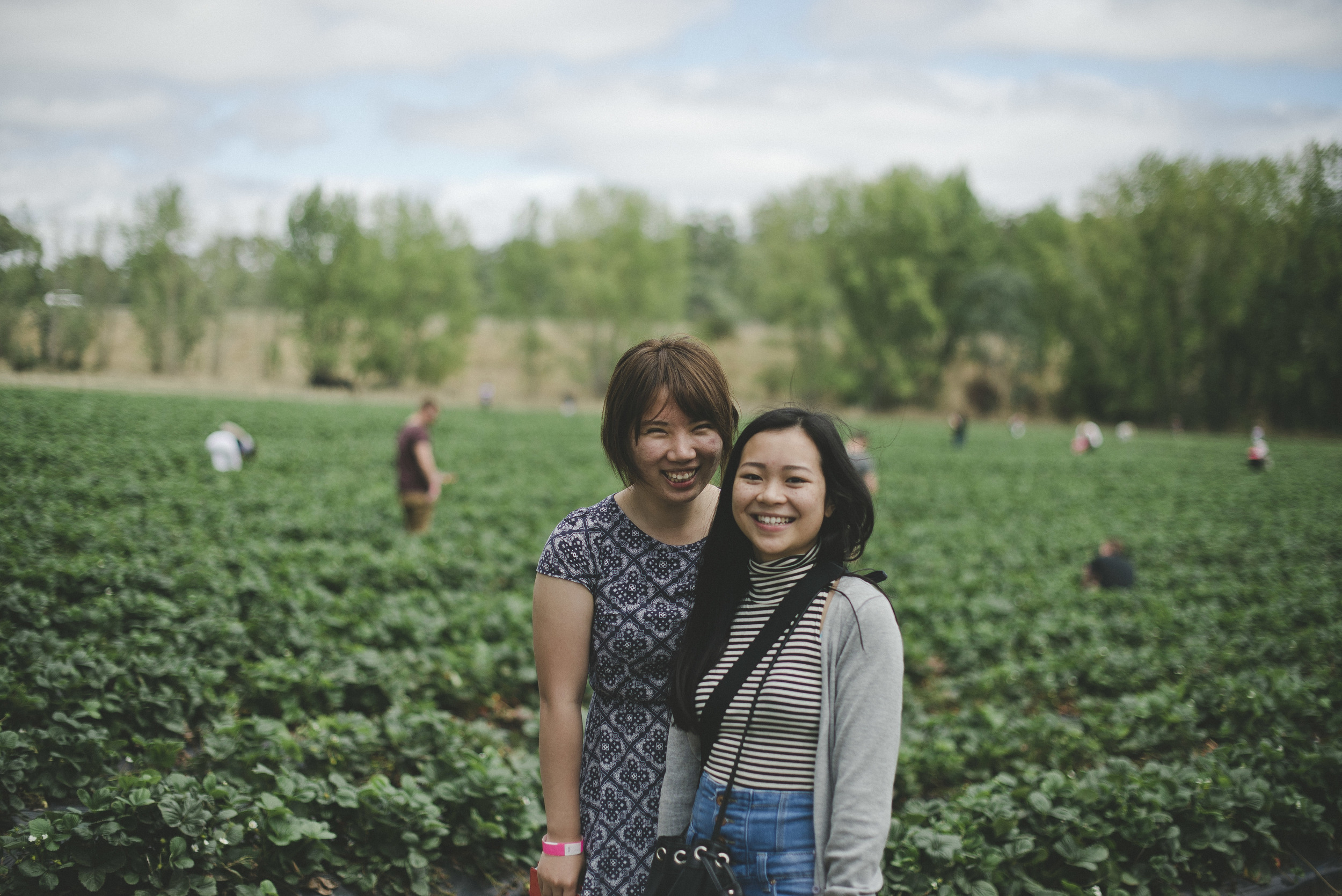 Ava came to visit from Perth  and we went to pick strawberries, tasted food at Hahndorf and caught up on everything we'd missed in the past 5 years.