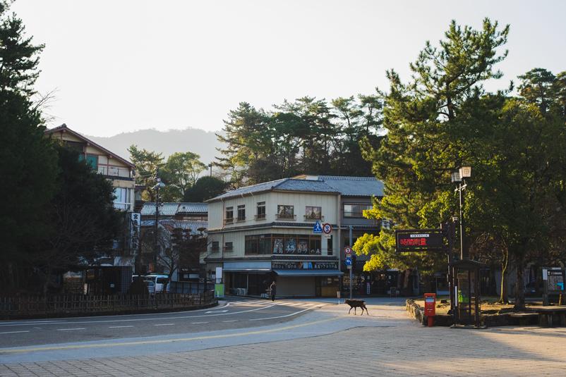 Hiroshima_Japan_Travel_Diary_41.jpg