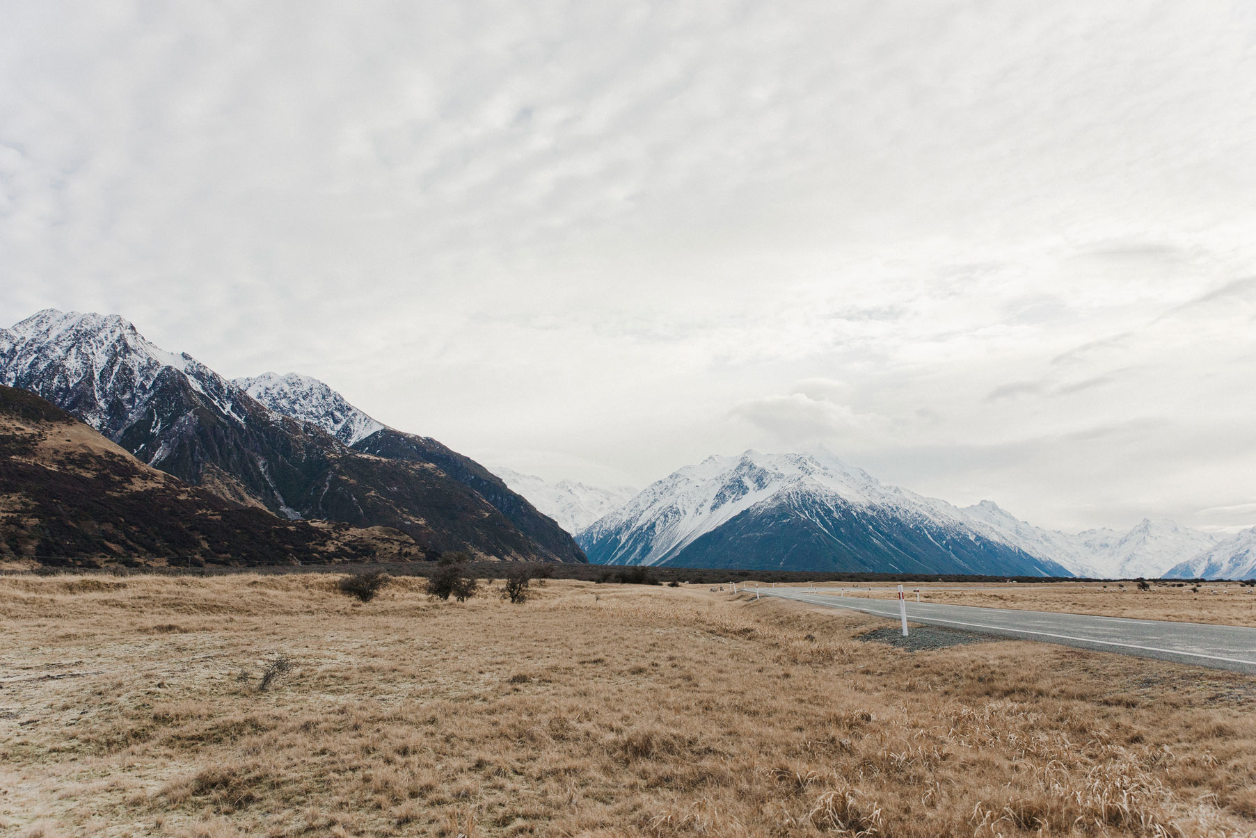 DSC_4093-MT-COOK-WEB.jpg