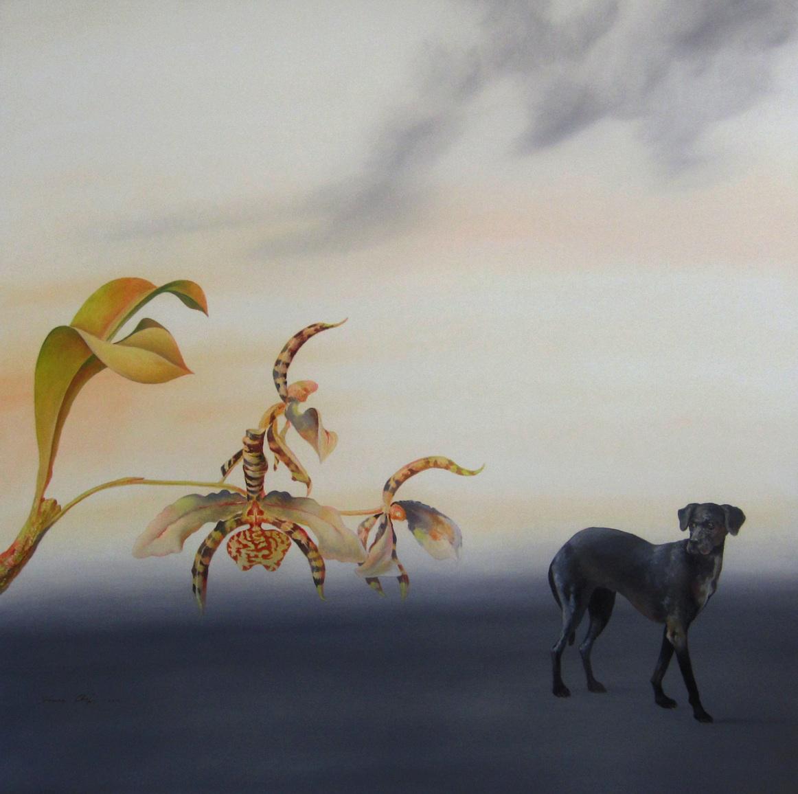 Genia Chef, Wild Orchid, 2013