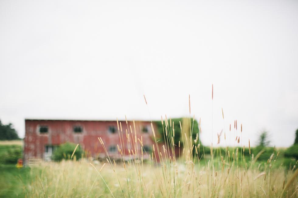 parikha mehta photography - labor of love session - two gander farm