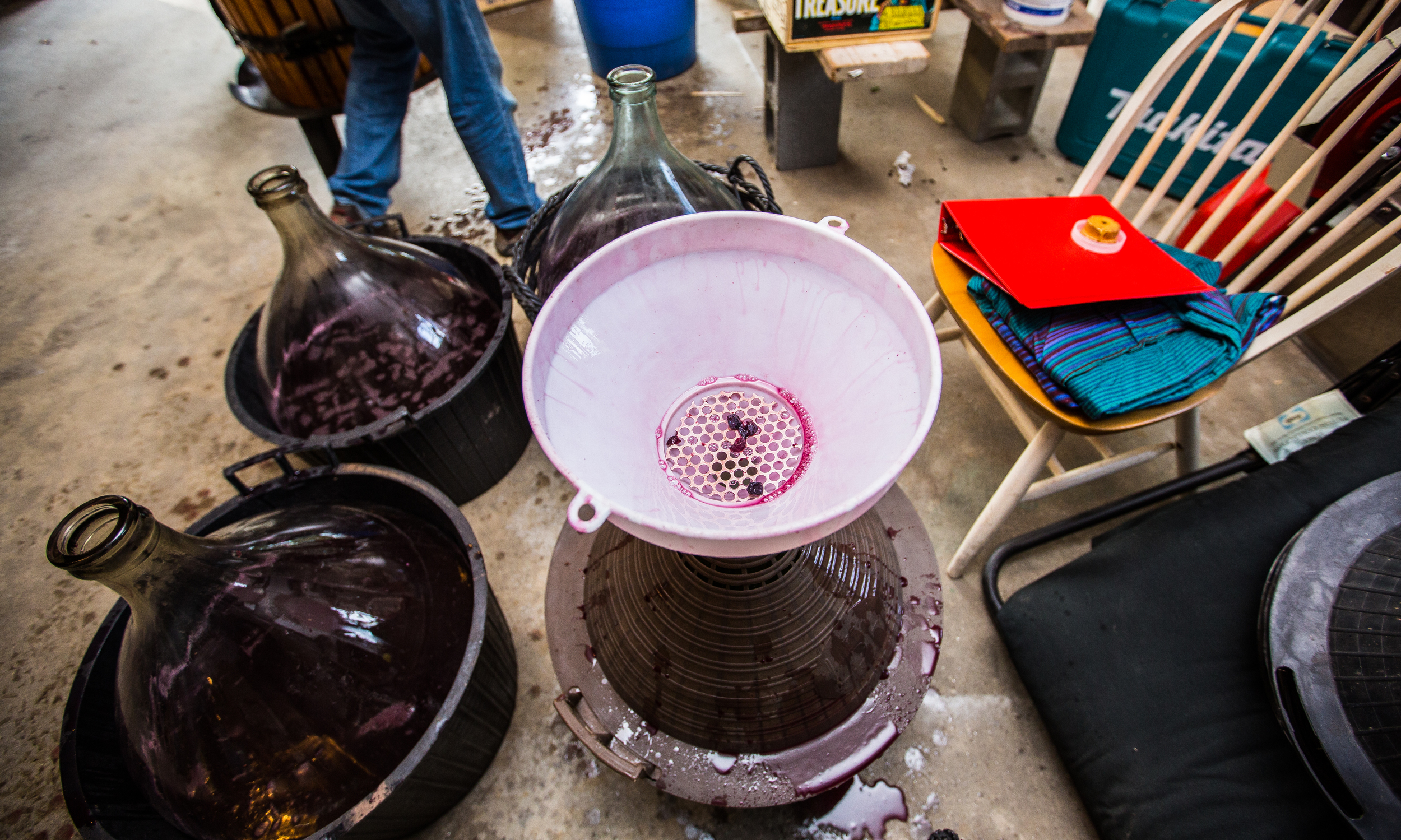 WINEMAKING_100515-1.jpg