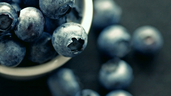 fruits depth of field blueberries blueberry 1400x787 wallpaper_wallpaperswa.com_83.jpg