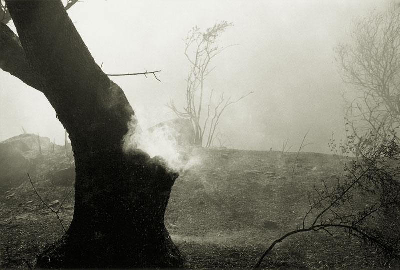 Smoking Olive, Mijas 1993.jpg