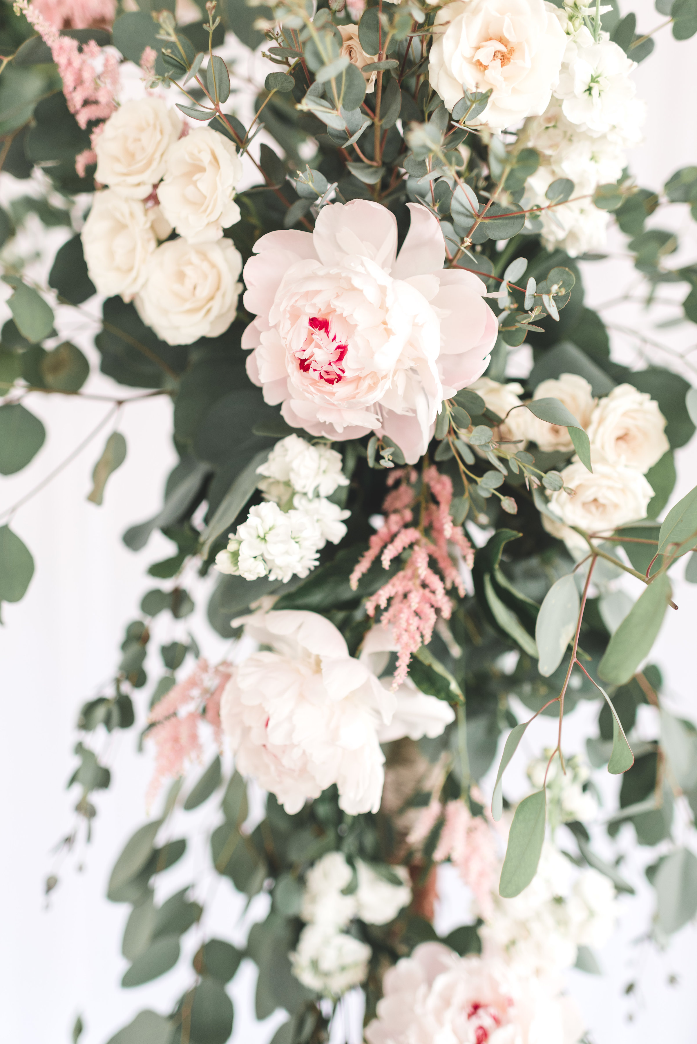 Wachtel-Wedding-0256.jpg