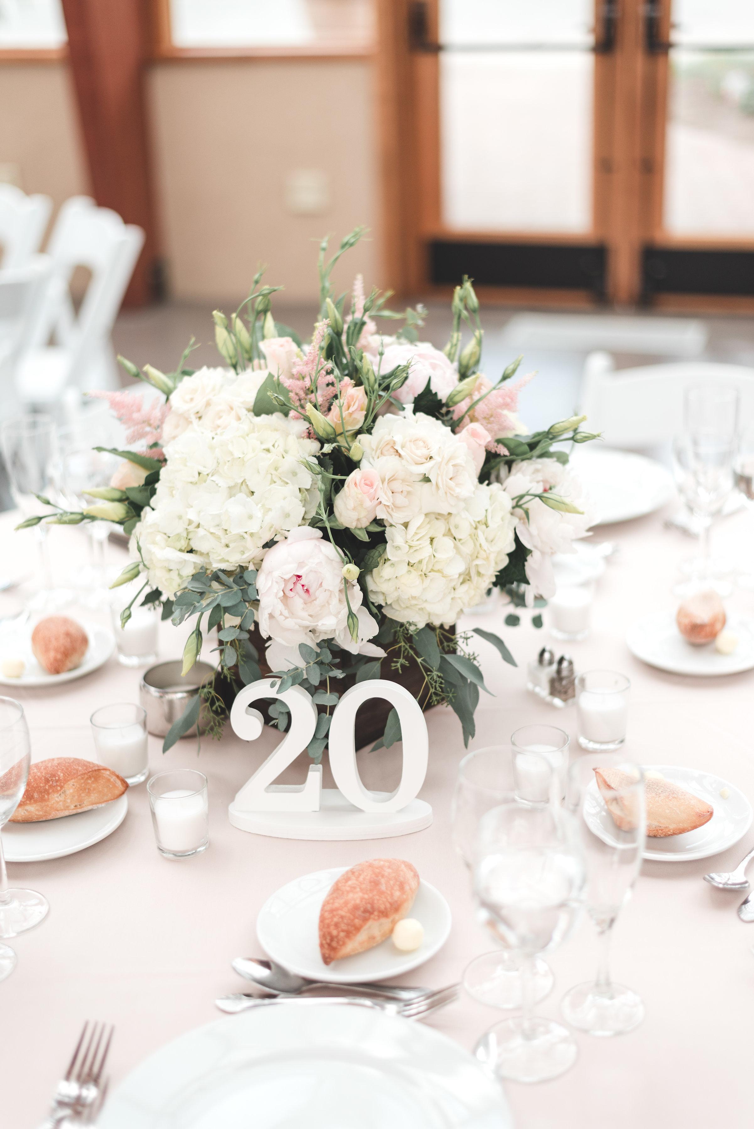 Wachtel-Wedding-0512.jpg